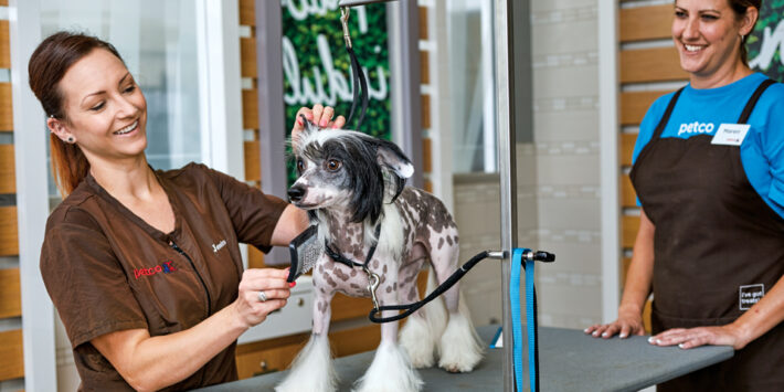 Art of Pets Grooming School